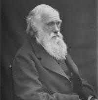 داروین و خلقت
